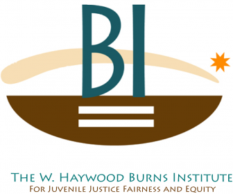 The W. Haywood Burns Institute